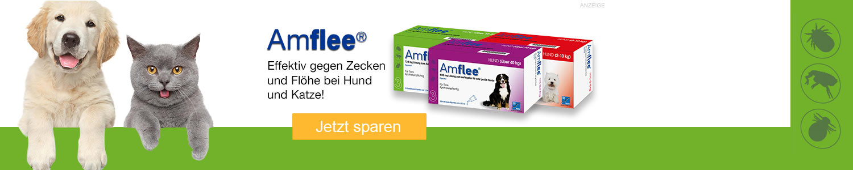 Jetzt Amflee Produkte günstig online kaufen!