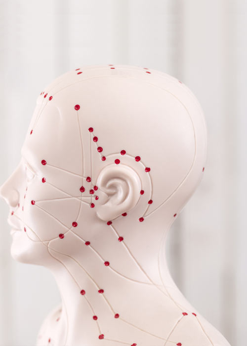 Rote Akkupunkturpunkte auf einem Modelkopf