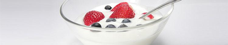 Darmflora & Probiotika