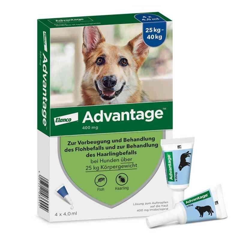 Advantage 400 für Hunde Lösung  bei deutscheinternetapotheke.de bestellen