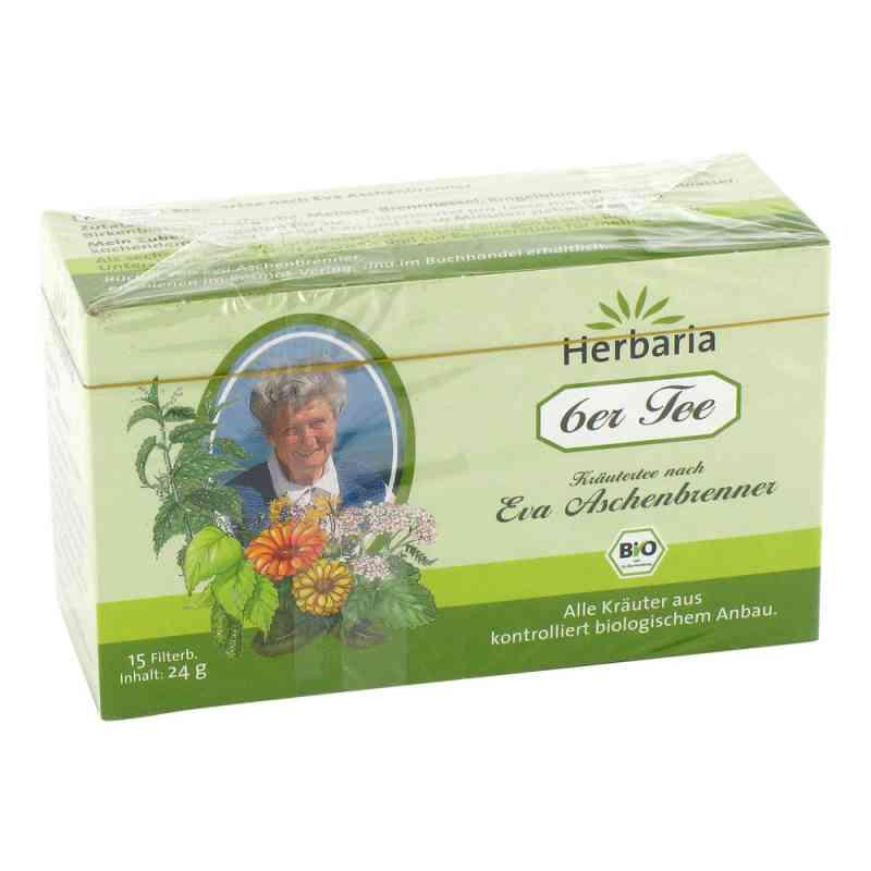 6er Tee nach Eva Aschenbrenner Filterbeutel  bei deutscheinternetapotheke.de bestellen