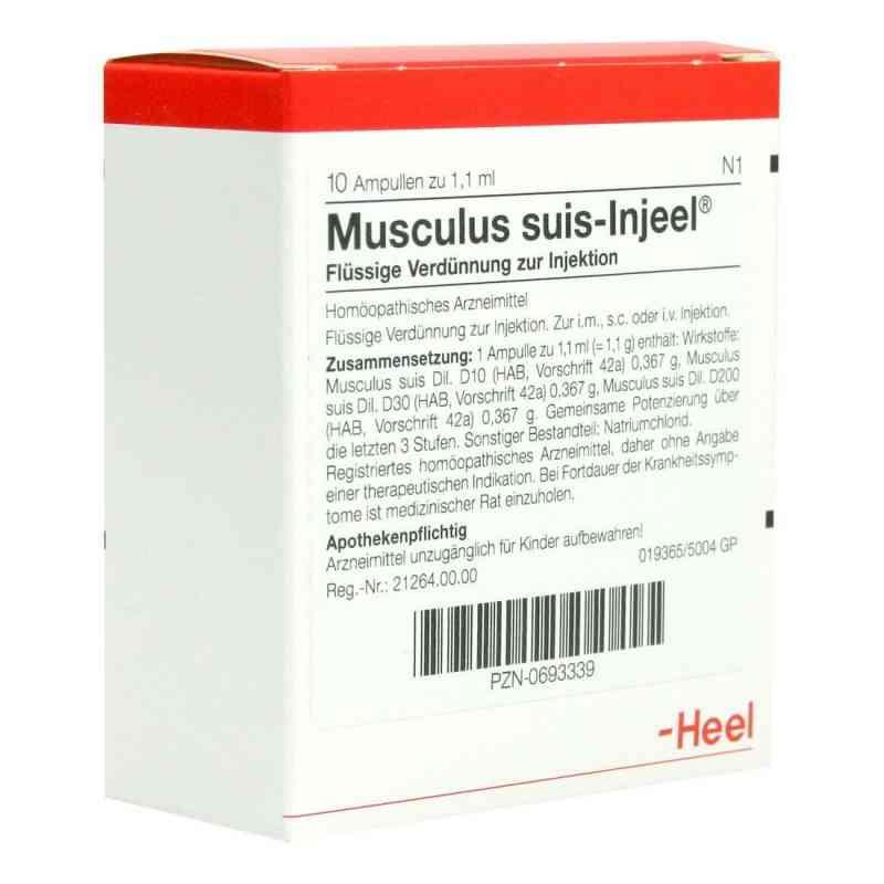 Musculus suis Injeel Ampullen  bei deutscheinternetapotheke.de bestellen