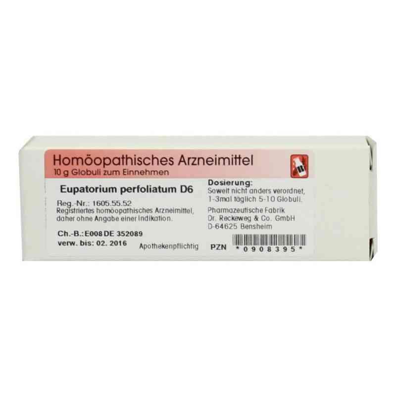 Eupatorium Perfoliatum D 6 Globuli  bei deutscheinternetapotheke.de bestellen
