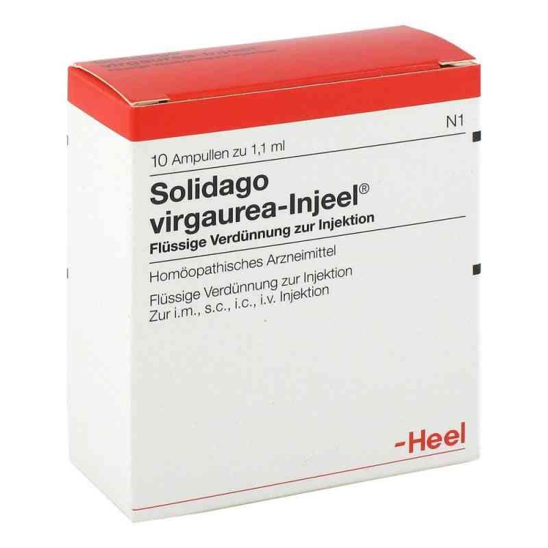 Solidago Virgaurea Injeel Ampullen  bei deutscheinternetapotheke.de bestellen