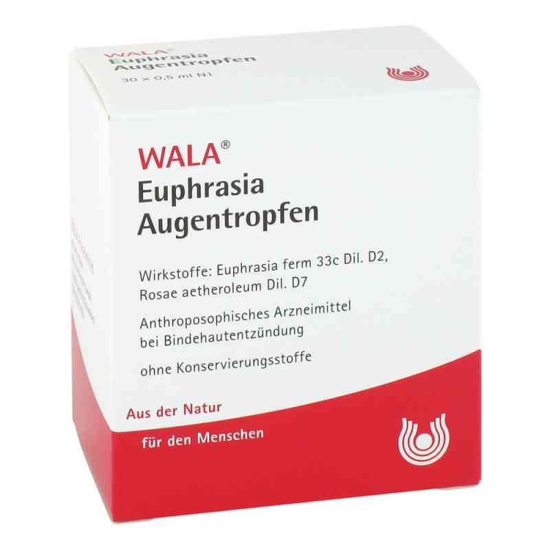 Euphrasia Augentropfen  bei deutscheinternetapotheke.de bestellen