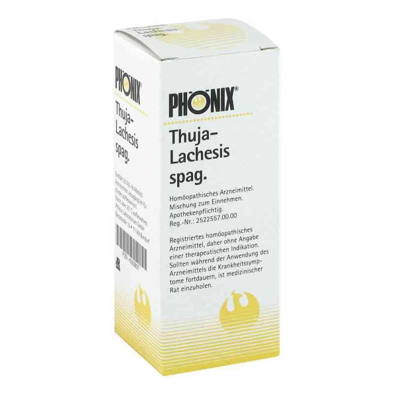 Phönix Thuja lachesis spag. Tropfen  bei deutscheinternetapotheke.de bestellen