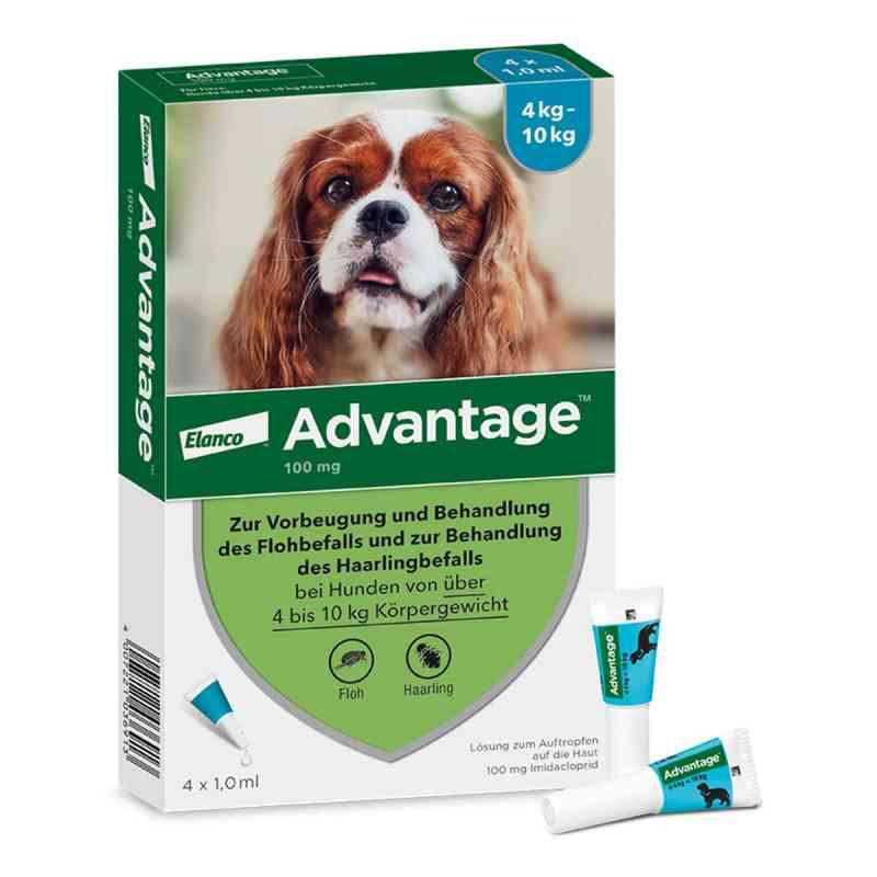 Advantage 100 für Hunde Lösung  bei deutscheinternetapotheke.de bestellen
