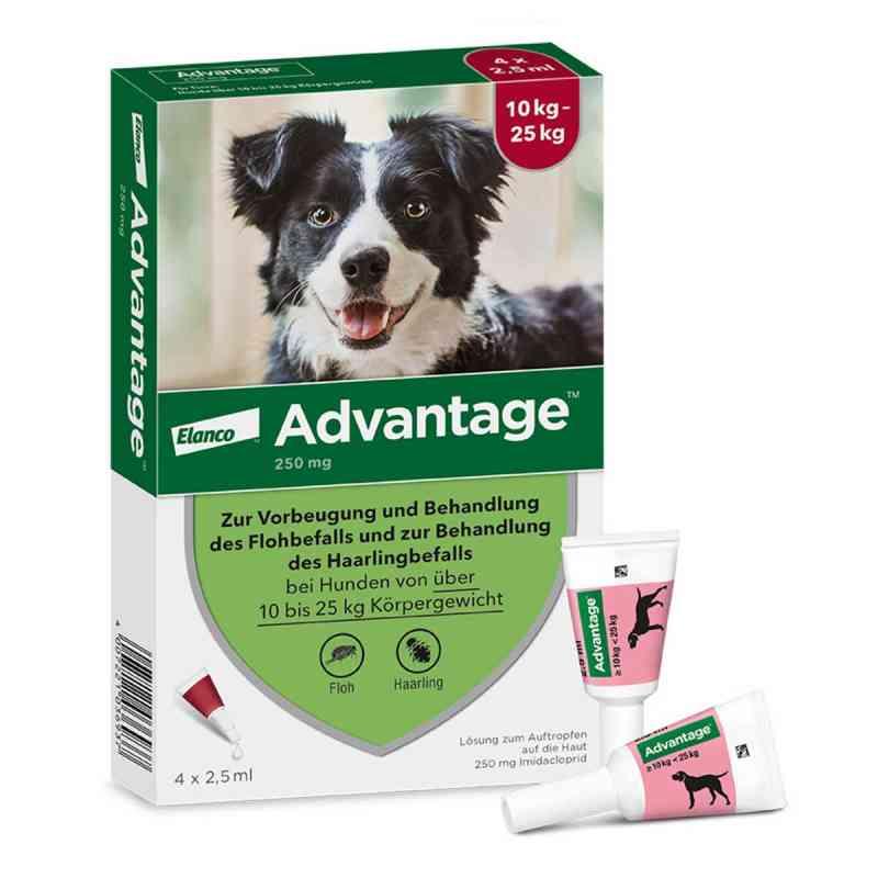 Advantage 250 für Hunde Lösung  bei deutscheinternetapotheke.de bestellen