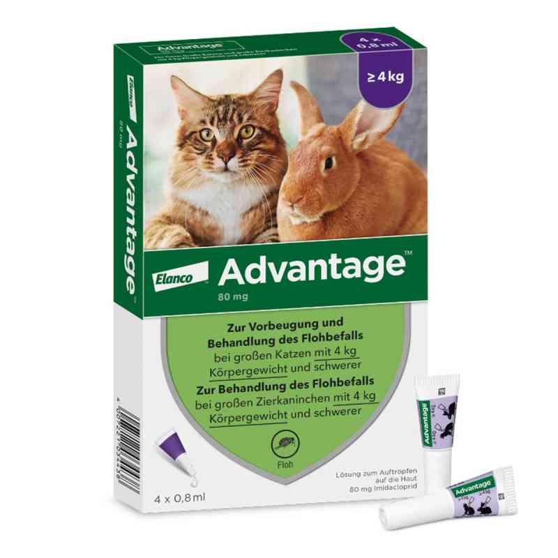 Advantage 80 mg für gr.Katzen und gr.Zierkaninchen  bei deutscheinternetapotheke.de bestellen