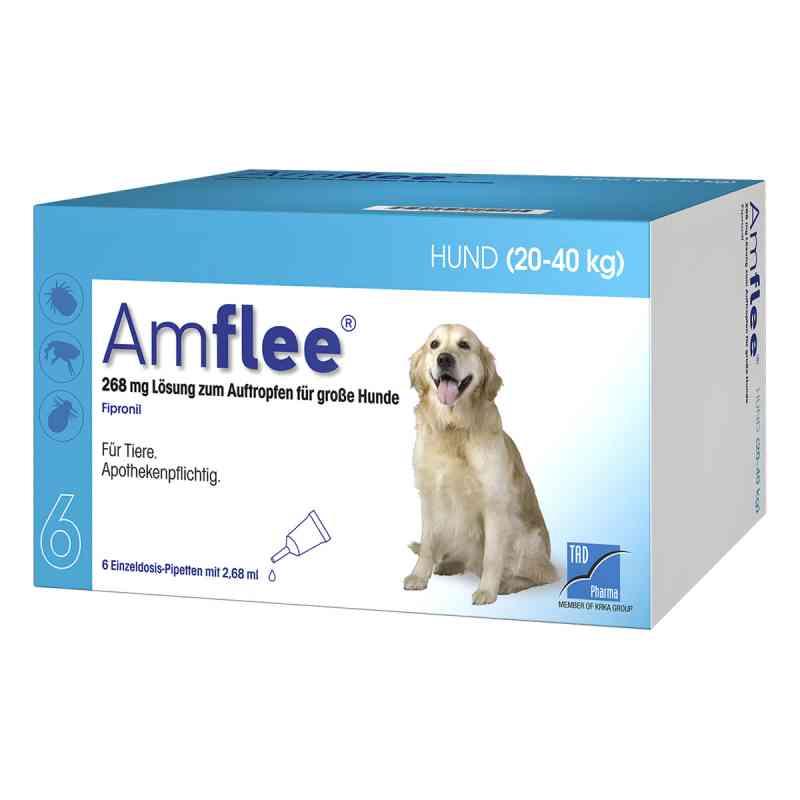 Amflee 268 mg Spot-on Lösung für grosse Hunde 20-40kg  bei deutscheinternetapotheke.de bestellen