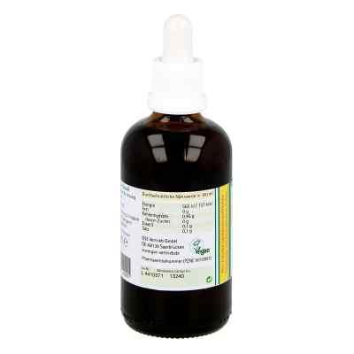 Koriander Extrakt Bio 23% V/v  bei deutscheinternetapotheke.de bestellen
