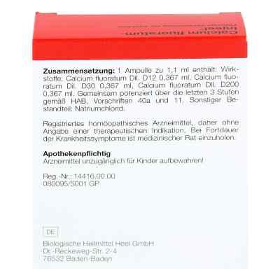 Calcium Fluoratum Injeel Ampullen  bei deutscheinternetapotheke.de bestellen