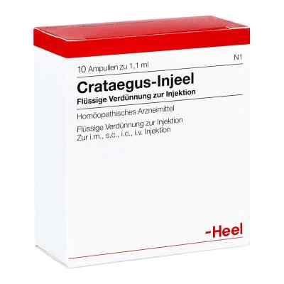 Crataegus Injeel Ampullen  bei deutscheinternetapotheke.de bestellen