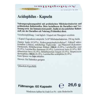 Acidophilus Kapseln  bei deutscheinternetapotheke.de bestellen