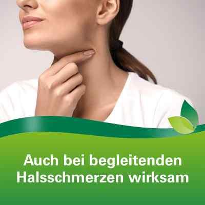 Phytohustil Hustenreizstiller Sirup bei Reizhusten  bei deutscheinternetapotheke.de bestellen