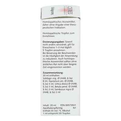 Ceres Solidago compositus Tropfen  bei deutscheinternetapotheke.de bestellen