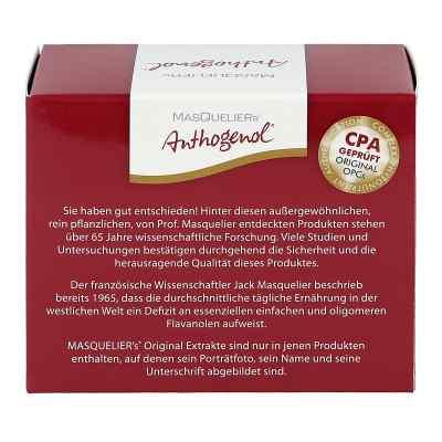 Opc Original Masqueliers Anthogenol Kapseln  bei deutscheinternetapotheke.de bestellen