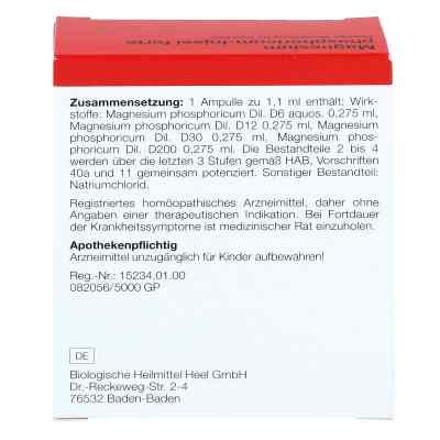 Magnesium Phosphoricum Injeel forte Ampullen  bei deutscheinternetapotheke.de bestellen