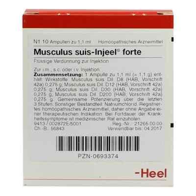 Musculus suis Injeel forte Ampullen  bei deutscheinternetapotheke.de bestellen