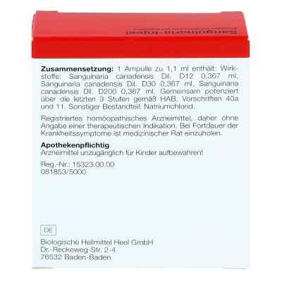 Sanguinaria Injeel Ampullen  bei deutscheinternetapotheke.de bestellen