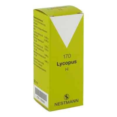 Lycopus H Nummer 170 Tropfen  bei deutscheinternetapotheke.de bestellen