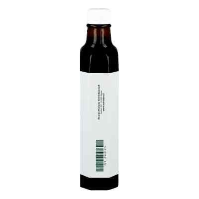 Schwarzkümmelöl 100% ägyptisch kaltgepresst  bei deutscheinternetapotheke.de bestellen