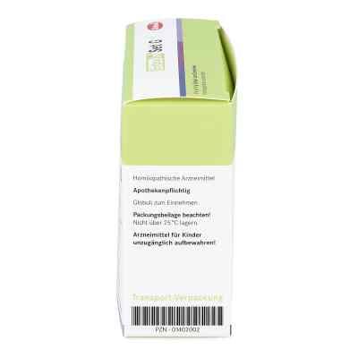 Entoxin Set G Globuli  bei deutscheinternetapotheke.de bestellen