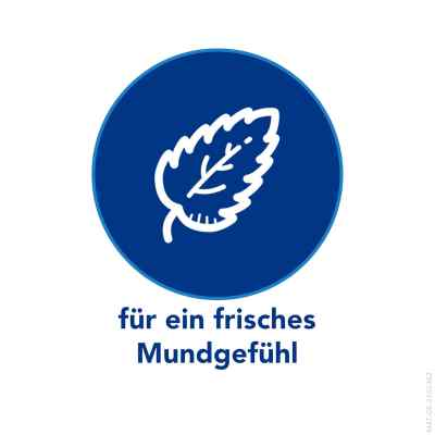 Maaloxan 25 mVal Kautabletten Pfefferminze bei Sodbrennen  bei deutscheinternetapotheke.de bestellen