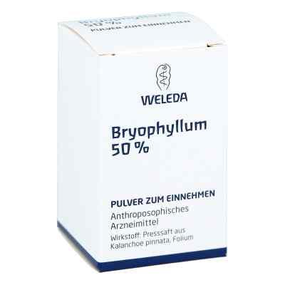 Bryophyllum 50% Pulver zum Einnehmen  bei deutscheinternetapotheke.de bestellen