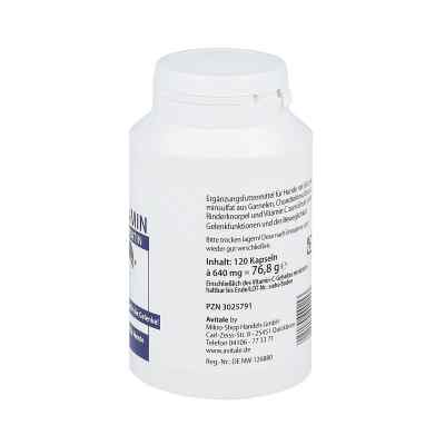 Glucosamin+chondroitin Kapseln für Hunde  bei deutscheinternetapotheke.de bestellen