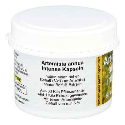 Artemisia Annua Beifuss Kapseln  bei deutscheinternetapotheke.de bestellen