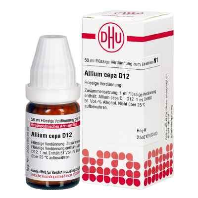 Allium Cepa D12 Dilution  bei deutscheinternetapotheke.de bestellen