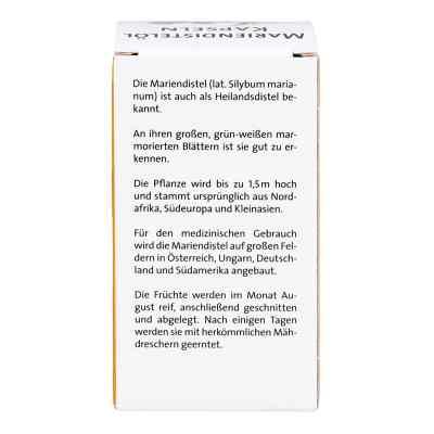 Mariendistel öl 500 mg Kapseln  bei deutscheinternetapotheke.de bestellen