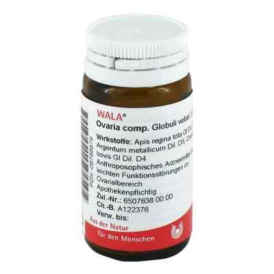 Ovaria Comp. Globuli  bei deutscheinternetapotheke.de bestellen