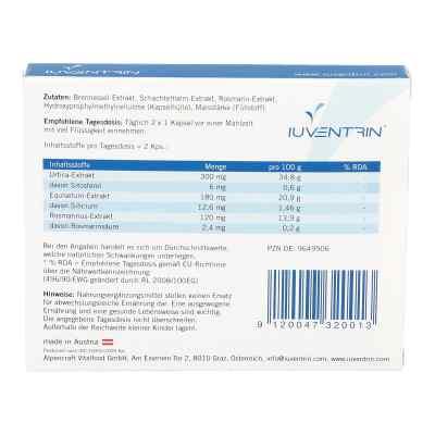 Iuventrin Potenzmittel natürl. Inhaltsstoffe Kapsel (n)   bei deutscheinternetapotheke.de bestellen