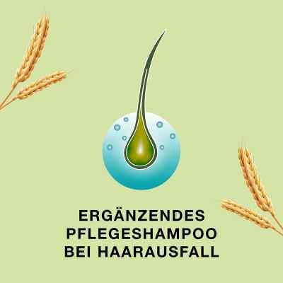 Priorin Shampoo bei Haarausfall und dünner werdendes Haar  bei deutscheinternetapotheke.de bestellen