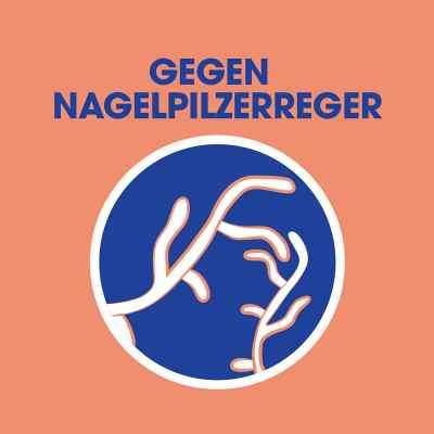 Sagrotan Wäsche-hygienespüler Desinfektion  bei deutscheinternetapotheke.de bestellen