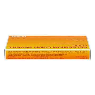 Gelsemium Comp.hevert injekt Ampullen  bei deutscheinternetapotheke.de bestellen