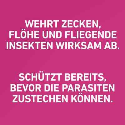 Frontline Tri-Act gegen Zecken, Flöhe bei Hunden (20-40kg)  bei deutscheinternetapotheke.de bestellen