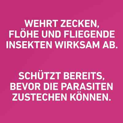 Frontline Tri-Act gegen Zecken, Flöhe bei Hunden (40-60kg)  bei deutscheinternetapotheke.de bestellen