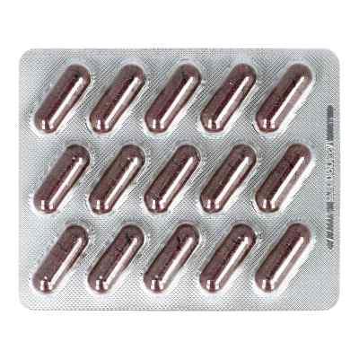 Cranberry Extrakt 300 mg Kapseln von apo-discounter  bei deutscheinternetapotheke.de bestellen